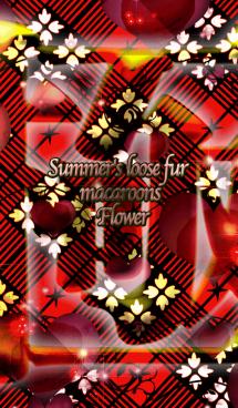 夏のゆるふわマカロン極花入り翁格子 画像(1)