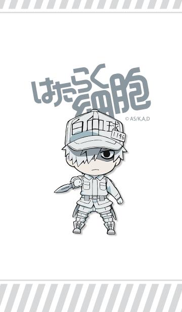 TVアニメ「はたらく細胞」白血球の画像(表紙)