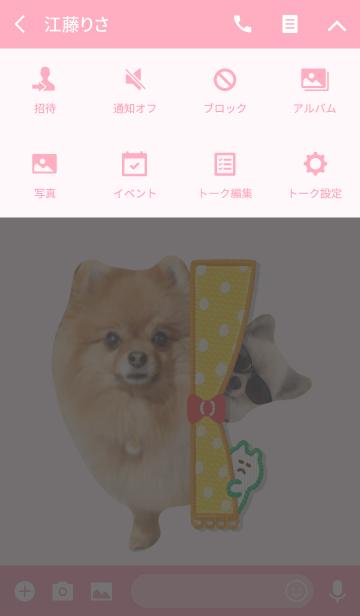 可愛いポメラニアンココちゃんの画像(タイムライン)