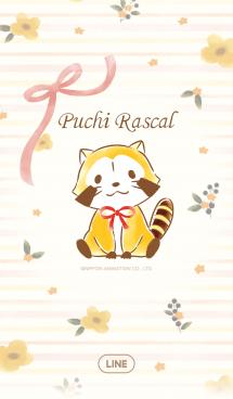 ラスカル☆オレンジフラワー 画像(1)