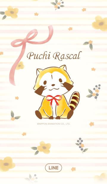 ラスカル☆オレンジフラワーの画像(表紙)