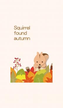 秋だ!リス見つけた ! 画像(1)