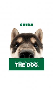 THE DOG 柴 2 画像(1)
