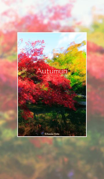 Autumn -warm color-の画像(表紙)