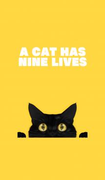 BLACK CAT -yellow- 画像(1)