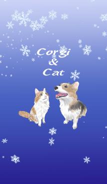 あるコーギーとある茶白ネコの冬の着せ替え 画像(1)