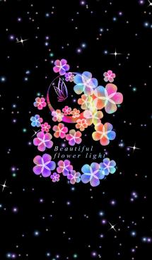 美しい花の光 画像(1)