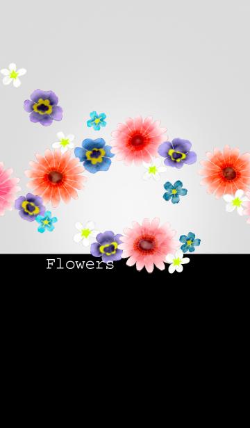 花/ブラック16の画像(表紙)