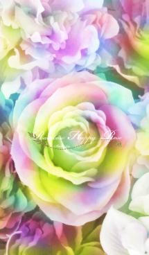 幸運UP!! Rainbow Happy Rose 画像(1)