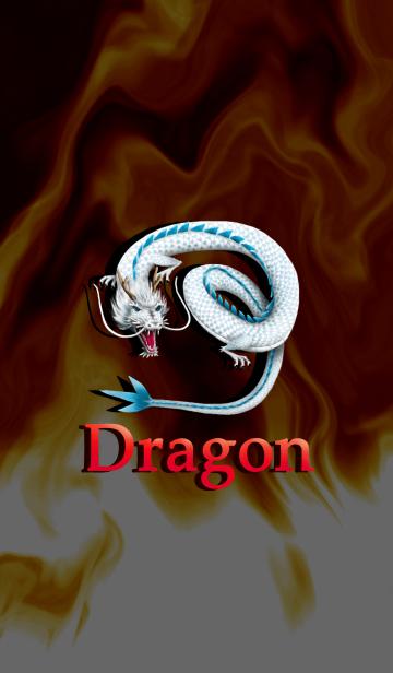 ★ドラゴンの画像(表紙)