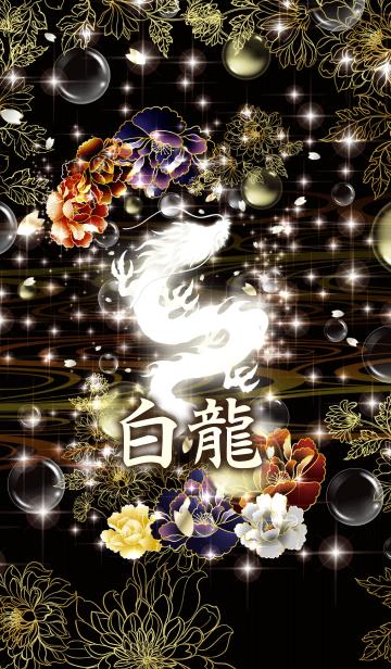 白龍 ~百花繚乱~の画像(表紙)