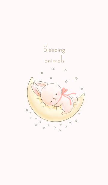 Sleeping animals 〜リトルバニー〜の画像(表紙)