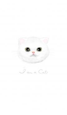 I am a cat - ねこ1 画像(1)