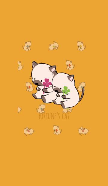 オレンジ / 風水 全幸運のネコの画像(表紙)