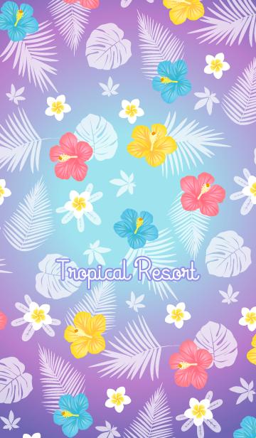トロピカル・リゾート 14の画像(表紙)