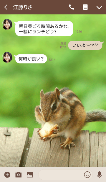 Funny and cute squirrel theme.の画像(トーク画面)