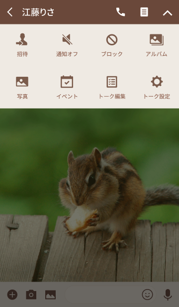 Funny and cute squirrel theme.の画像(タイムライン)