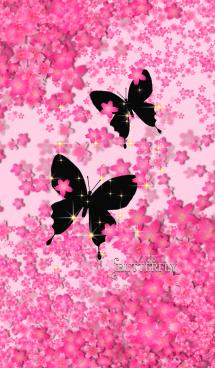 蝶*ツィンズ.桜ふぶき#54-1 画像(1)
