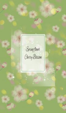 黄緑 / オトナ可愛い 春の桜 画像(1)