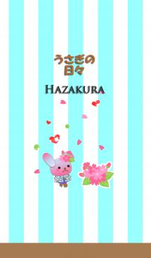うさぎの日々(葉桜) 画像(1)