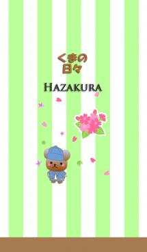 くまの日々(葉桜) 画像(1)