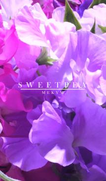 SWEET PEA -MEKYM-