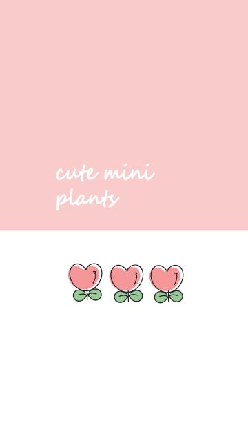 Cute mini plantsの画像(表紙)