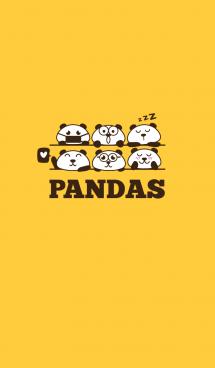 パンダ パンダ 画像(1)