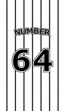 Number 64 stripe version 画像(1)