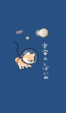 宇宙のしばいぬ 画像(1)