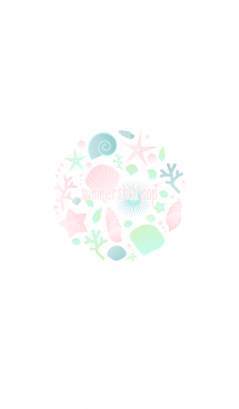 夏の貝殻 カラフル