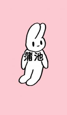 「蒲池」by ねこロック