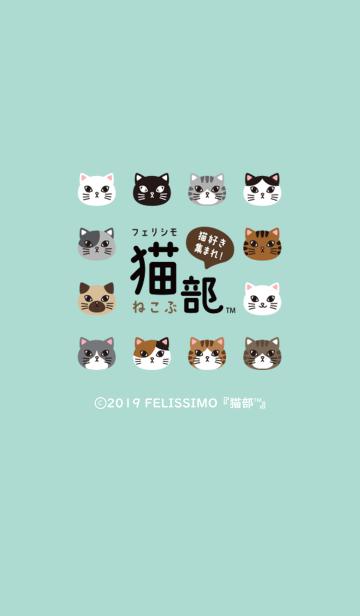 フェリシモ猫部の画像(表紙)