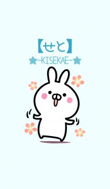 【せと】シンプルかわいいウサギ 画像(1)