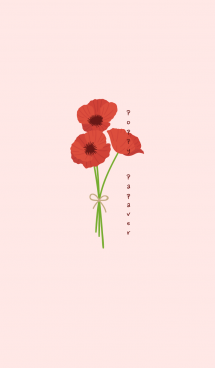 Poppy Papaver