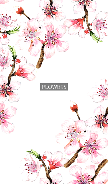 [LINE着せかえ] water color flowers_1082の画像