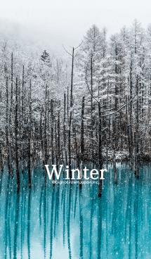 幻想的な冬の湖 画像(1)