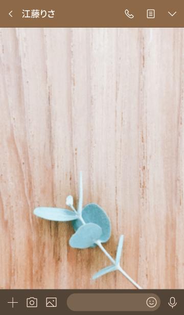 ユーカリの葉っぱの画像(トーク画面)