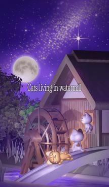 水車小屋の猫 画像(1)
