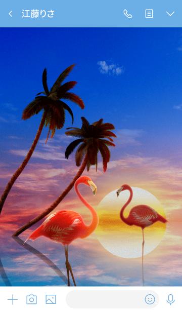 Palm & Flamingosの画像(トーク画面)