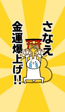 【さなえ】専用☆金運爆上げ着せかえ☆