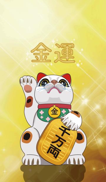 金運巨大招き猫の画像(表紙)