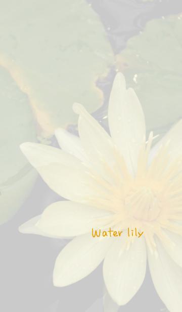 [LINE着せかえ] 睡蓮のきせかえ1の画像